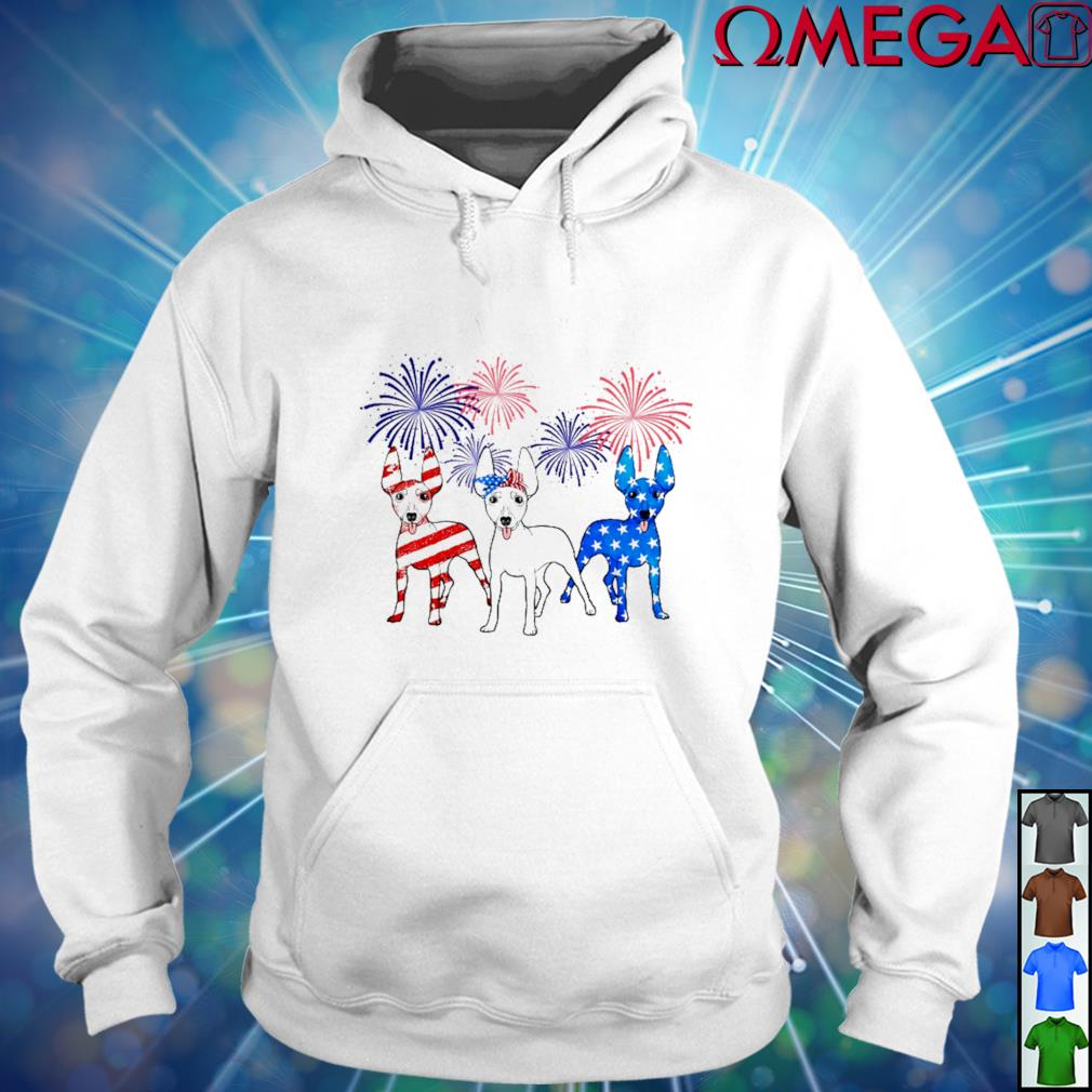 Miniature Pinscher Happy Independence Day America hoodie