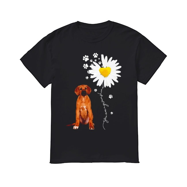 Beagle Dog Love You are my sunshine shirt